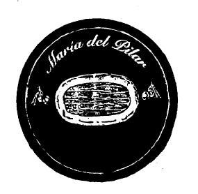 Mª del Pilar Miguel Albo